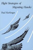 Flight Strategies of Migrating Hawks