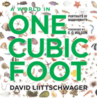 World in One Cubic Foot