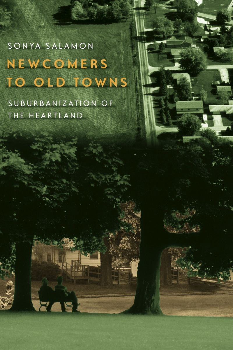 Cover of Newcomers to Old Towns