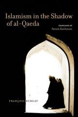 Islamism in the Shadow of al-Qaeda