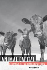Animal Capital