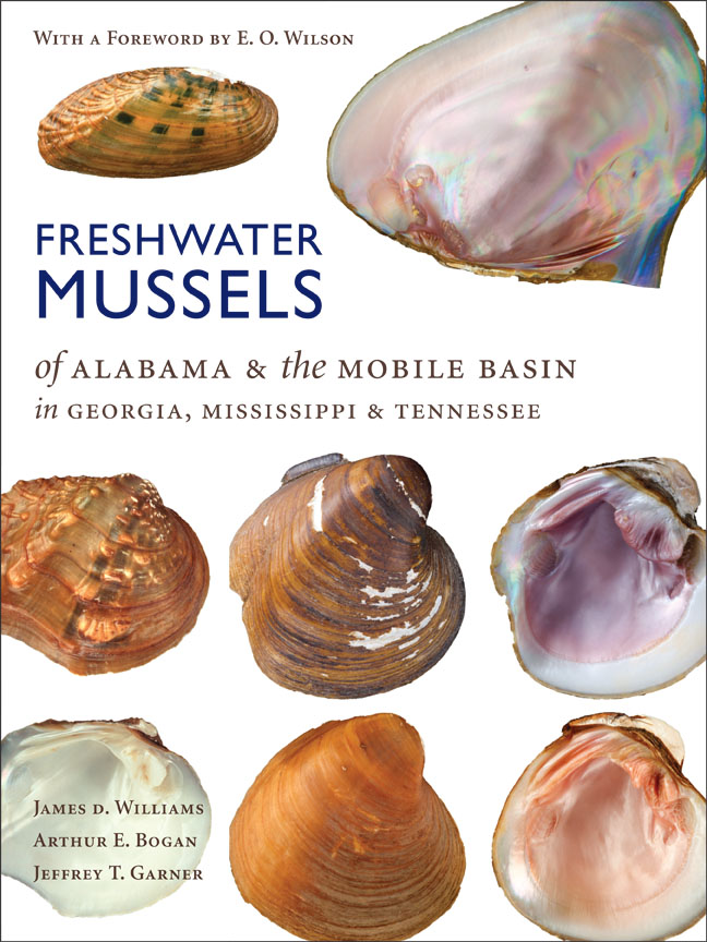 Freshwater Mussels of Alabama and the Mobile Basin in Georgia ...